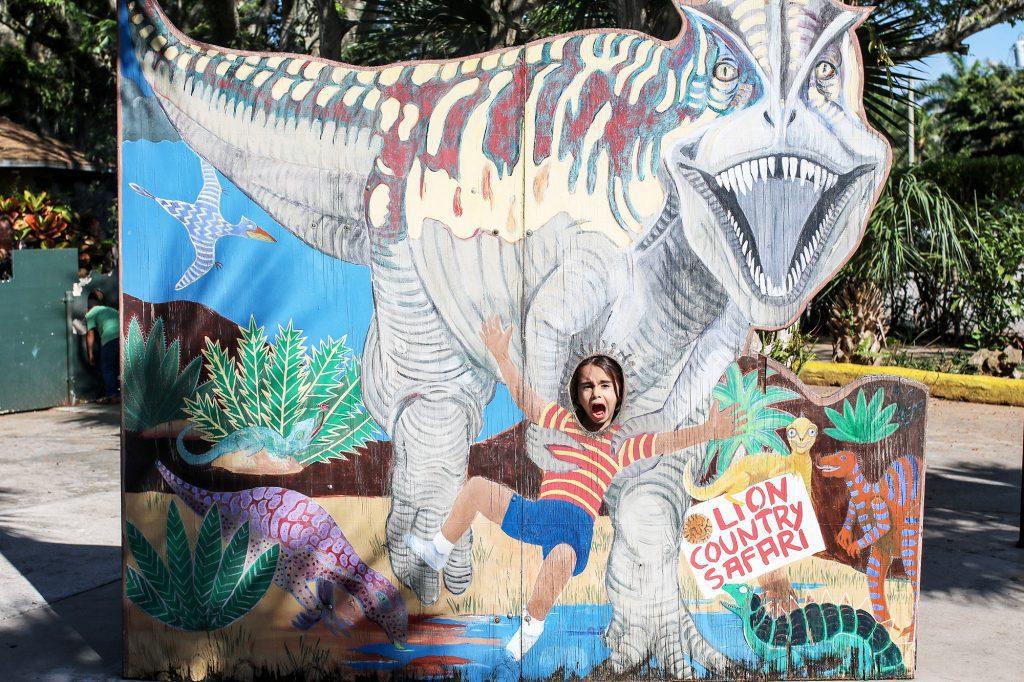 lion country safari, zoo, florida zoo, zoo in florida, safari, drive through safari, florida safari, palm beach, west palm beach, palm beach attraction, palm beach zoo, things to do in west palm beach, top attractions palm beach, things to do with kids in west palm beach, florida tourist attraction, things to do in florida