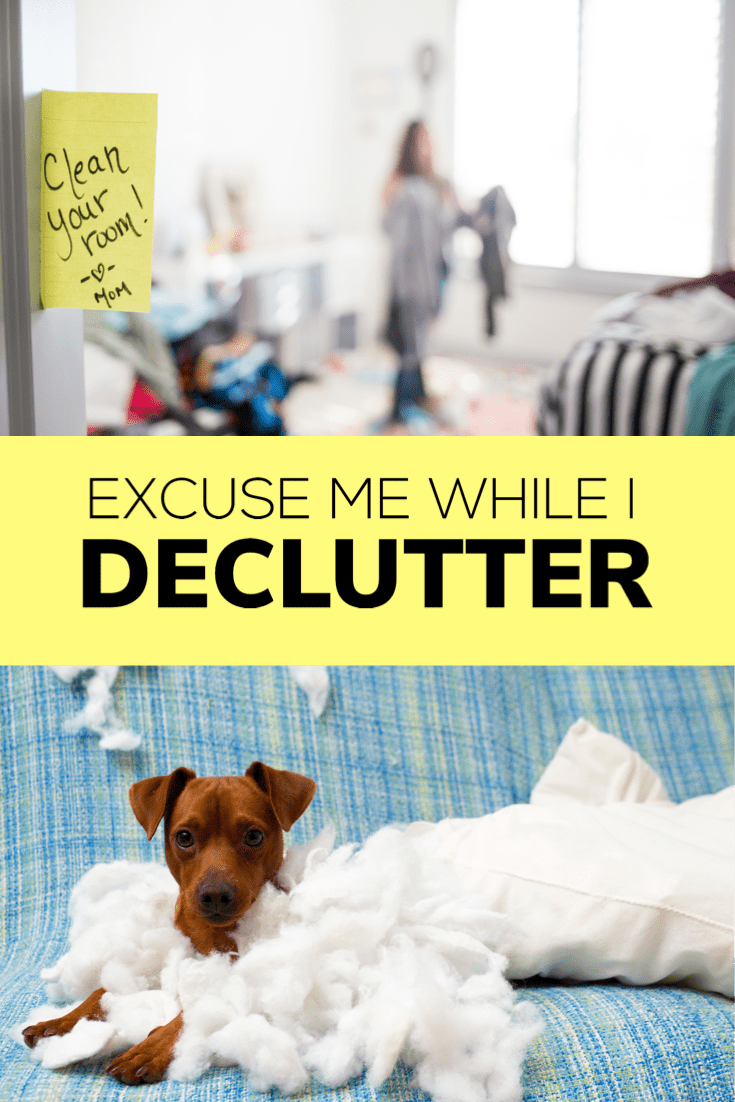 During our semi-annual declutter, I realized there are 5 things I want to get rid of, that won't quite fit in a bag. But... if I had a big ass dumpster...