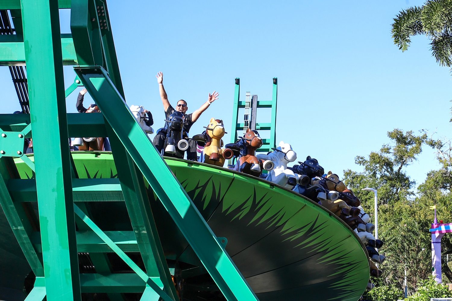 Man hands up on a roller coaster
