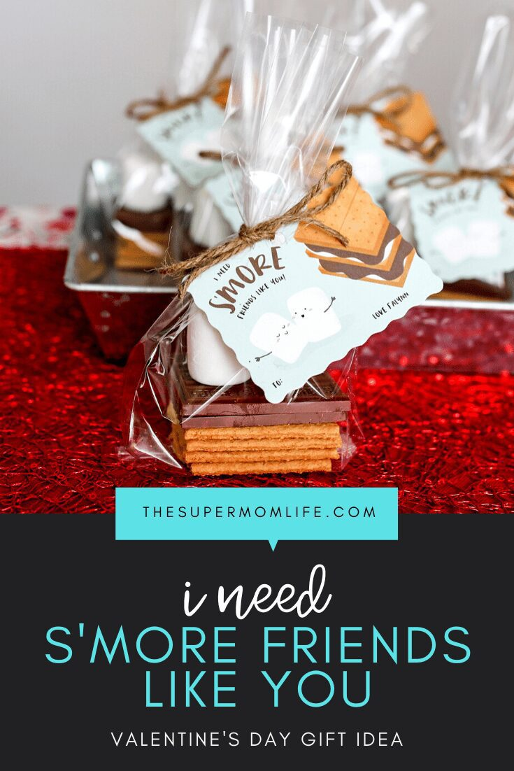 Tired of the boxed Valentine's Day cards? These s'mores kits are fun, inexpensive and something the kids will not stop talking about!
