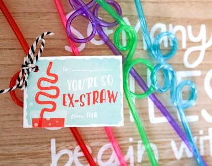 You're So Ex-Straw Valentine's Day Gift Idea