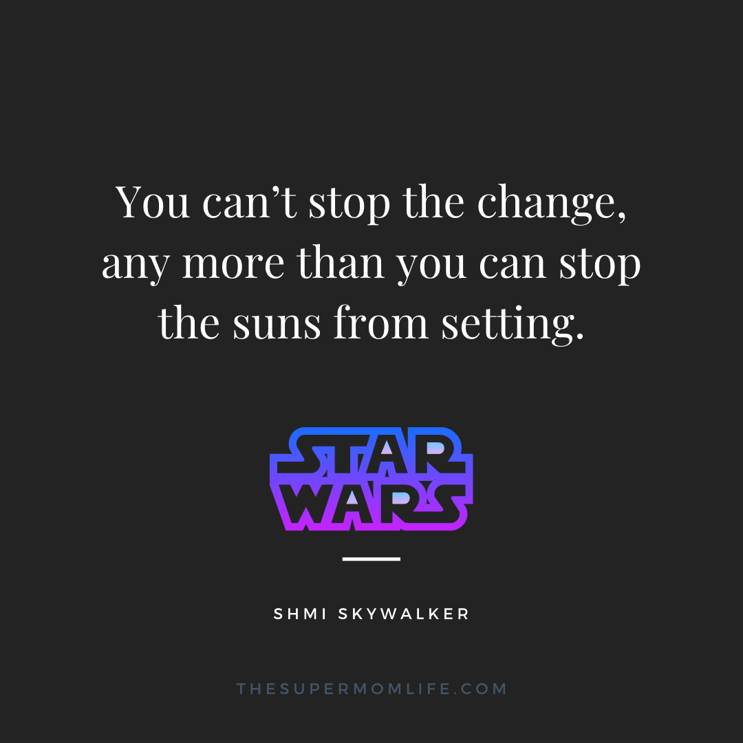 You can't stop the change, any more than you can stop the suns from setting.