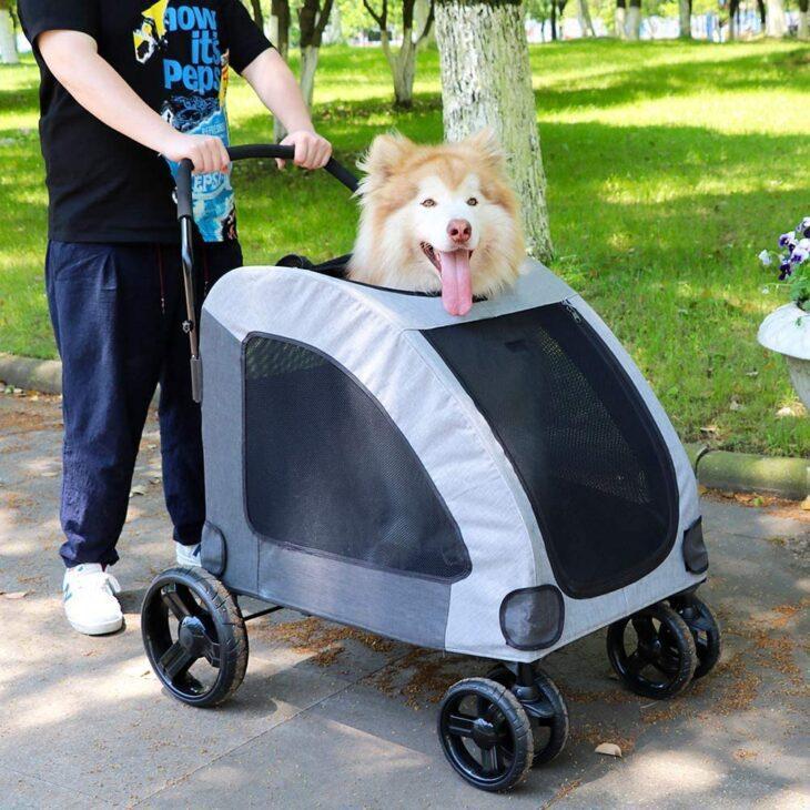 dog stroller for dog travel