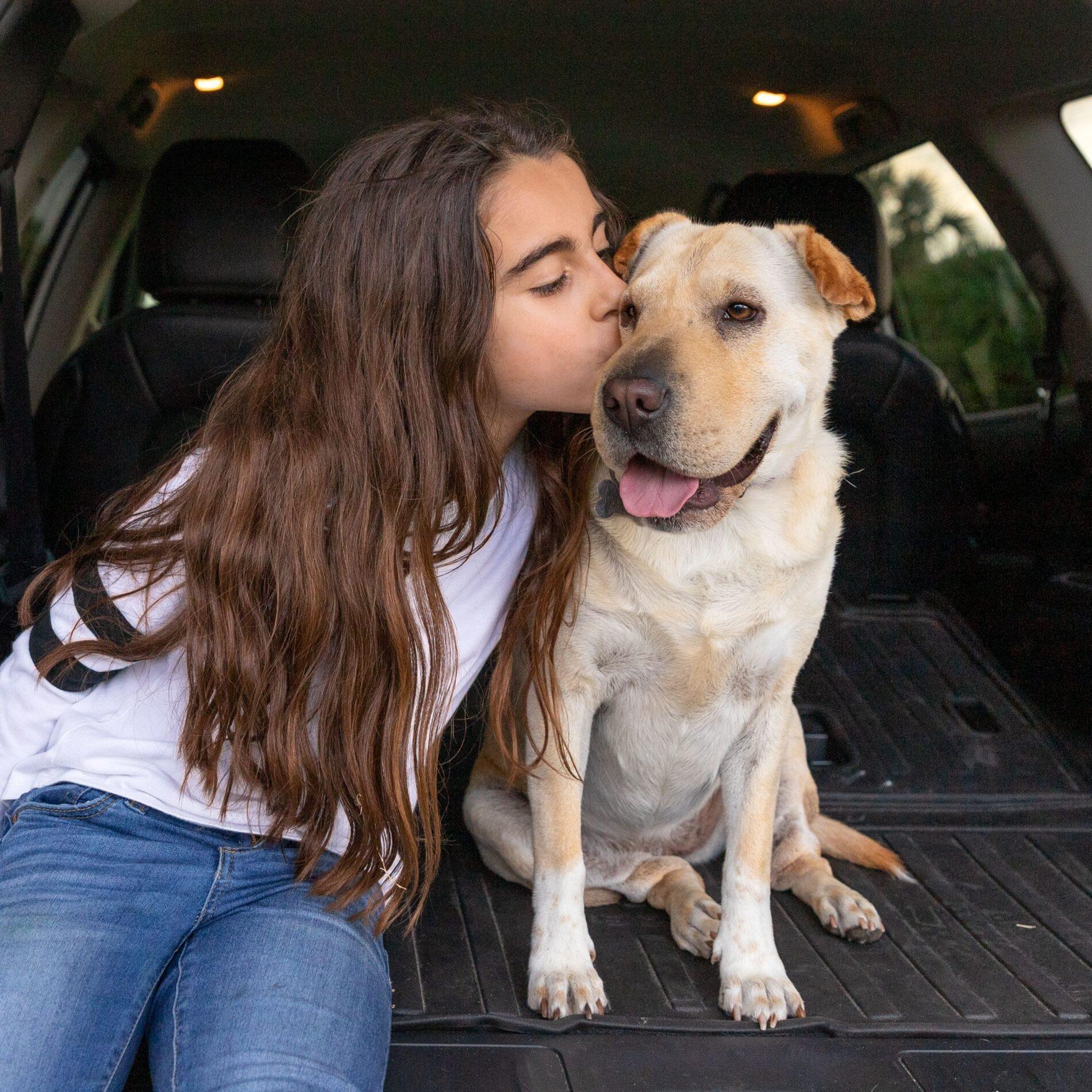 little girl kissing her dog